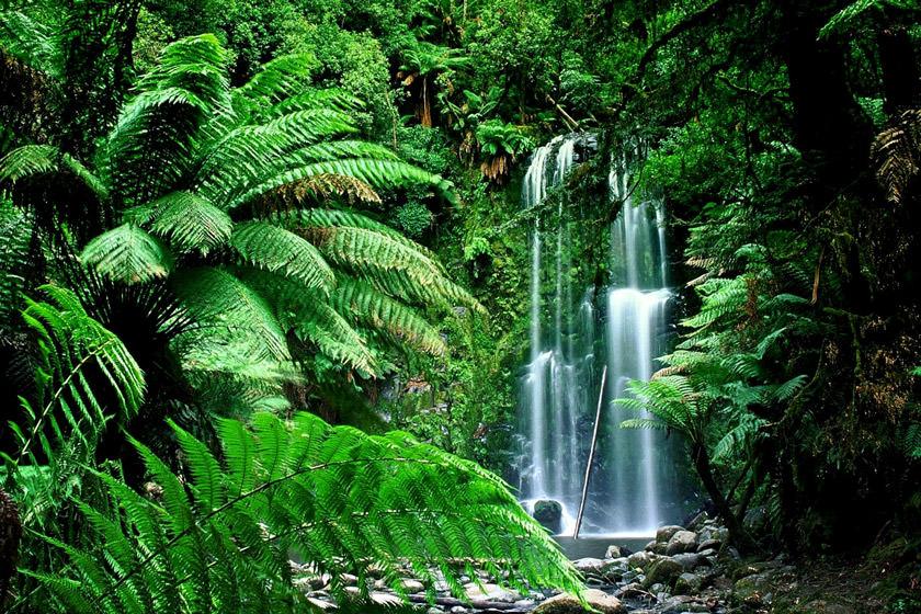 بلندترین آبشارهای جهان در کجا قرار دارند؟ (قسمت اول)