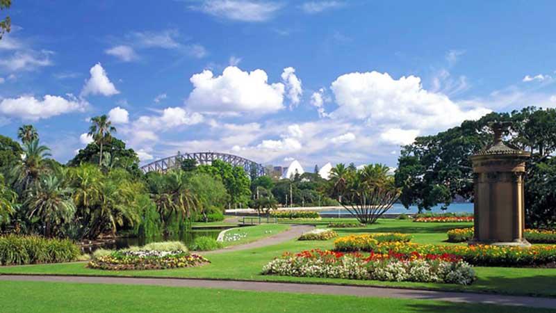 تصویر باغ گیاهشناسی سیدنی