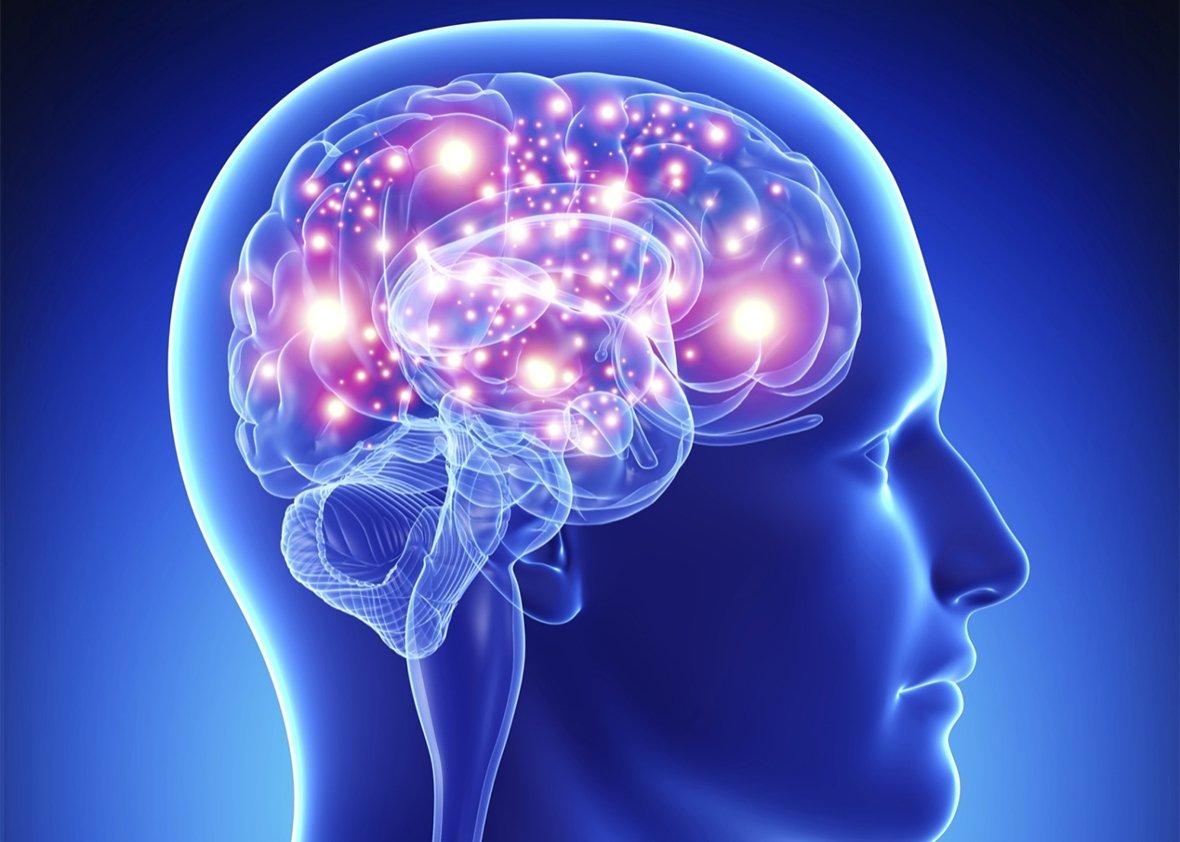 ارتباط بزرگی مغز با افزایش احتمال ابتلا به تومور مغزی