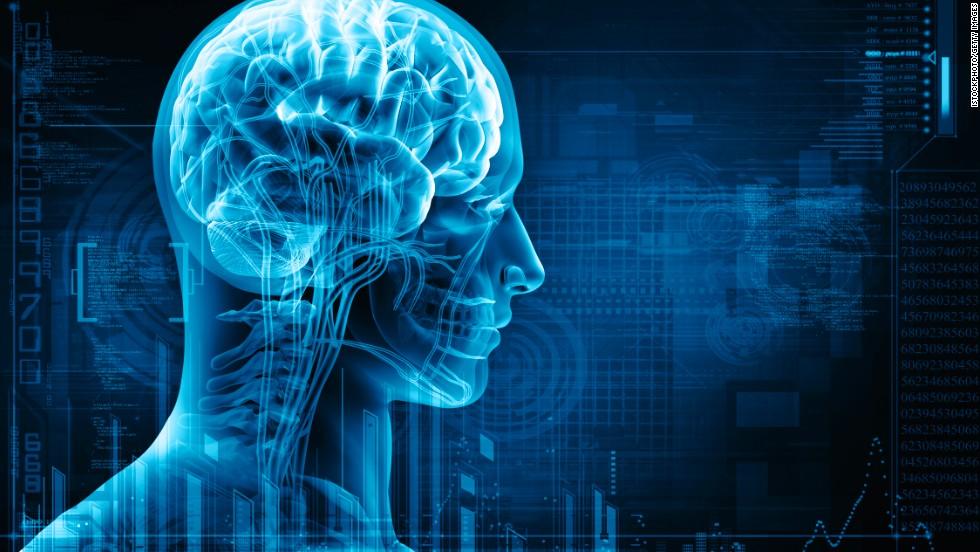 مغز ما چگونه اطلاعات را  به خاطر می آورد؟