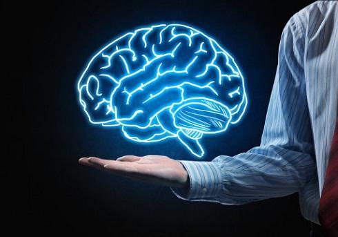 مزاج مغز شما سرد، گرم ، خشک یا تر است؟
