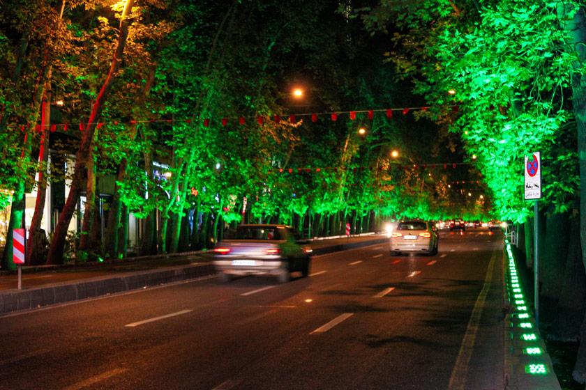 آلودگی نوری درختان ولیعصر را نابود می کند