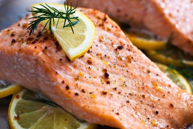 ماهی سلمون
