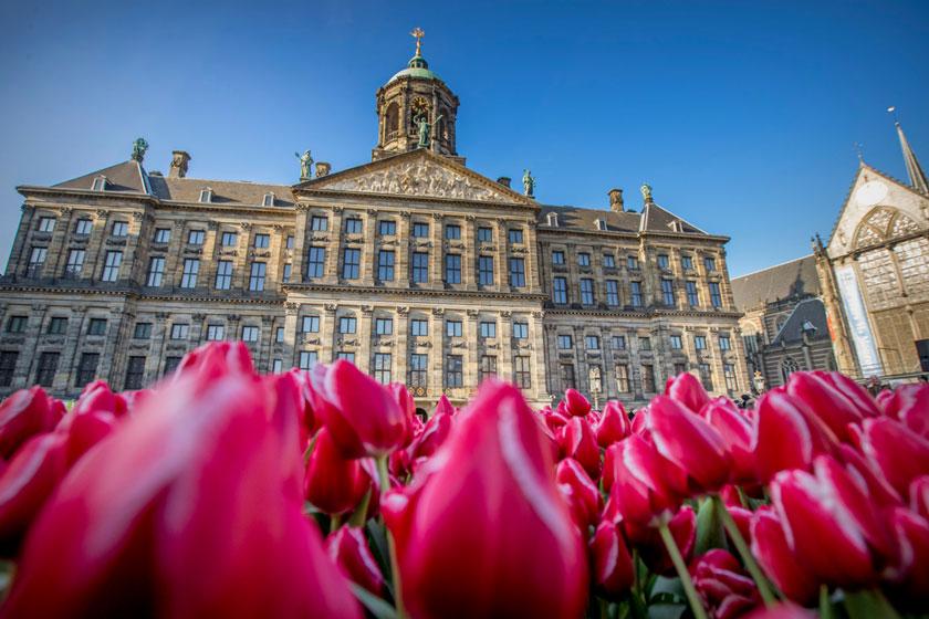 بهترین زمان سفر به آمستردام، پایتخت گل های لاله